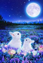 1000Pieces Puzzle Moon Waiting Rabbit Micro Pieces (26x38cm)